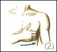 Самомассаж